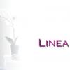 Linea Box